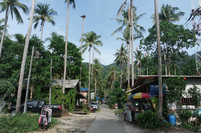 Koh Chang beaches Thailand, Discover Koh Chang island and the beaches, Thailand