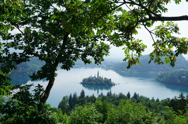 Tips-Lake Bled